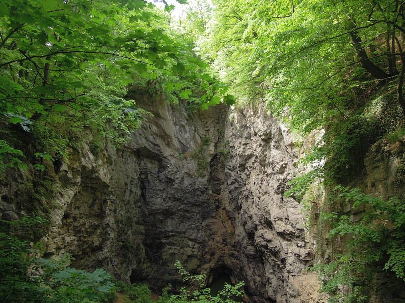 Wejście do jaskini Hranická propast /materiały prasowe