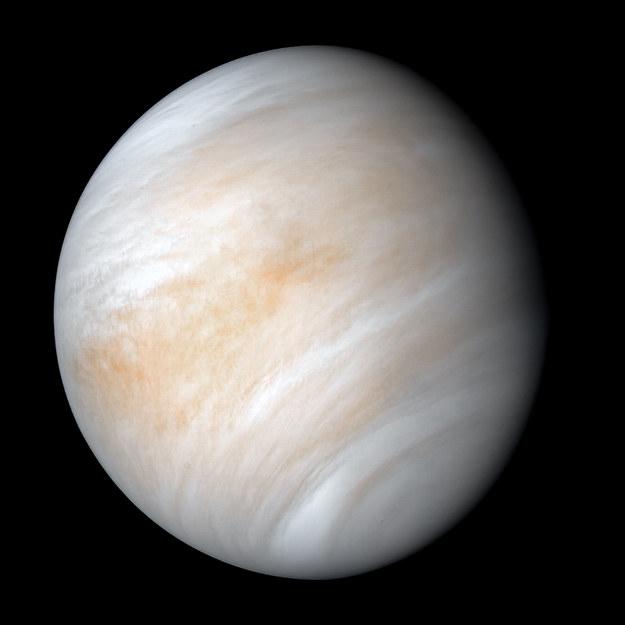 Wenus w obiektywie sondy Mariner 10, sfotografowana w lutym 1974 roku /NASA/JPL-Caltech /Materiały prasowe