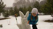 Wesoły śniegowy zajączek