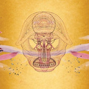 Devendra Banhart: -What Will Be Will Be