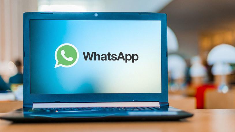 WhatsApp na komputerze - czy to jest możliwe? /123RF/PICSEL
