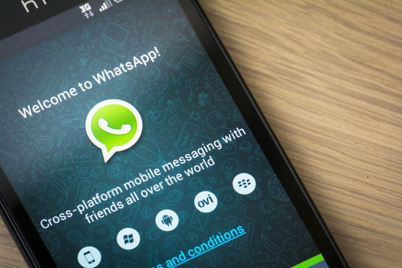 WhatsApp to bardzo popularny komunikator, konkurent Facebook Messengera /123RF/PICSEL