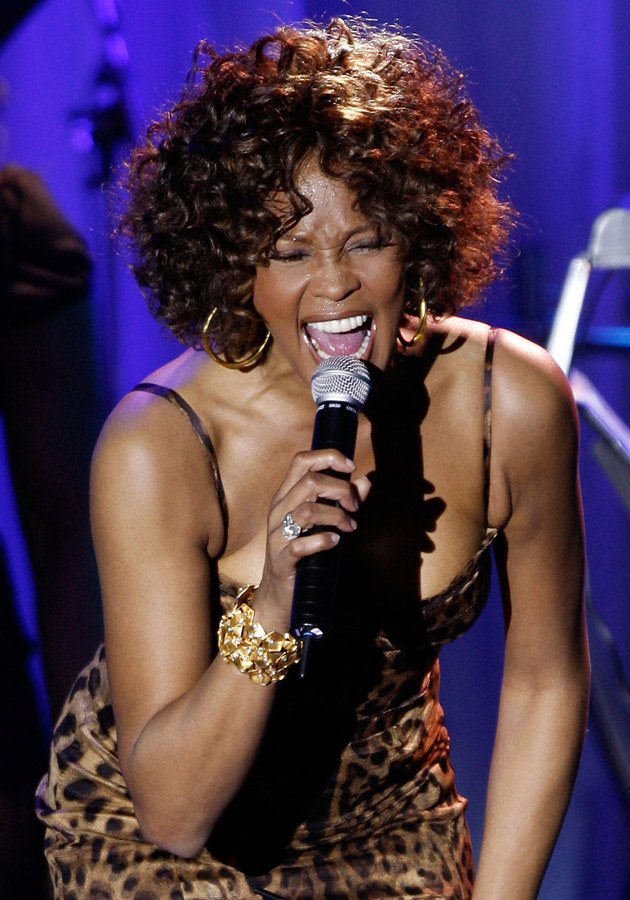 Whitney Houston /Kevin Winter /Getty Images