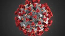 WHO mówi o pandemii. Co to oznacza?