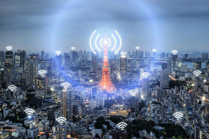 Wi-Fi zostanie wyparte przez Li-Fi? /123RF/PICSEL