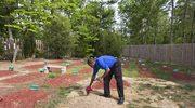 Wiadomo, gdzie pochowano Tamerlana Carnajewa