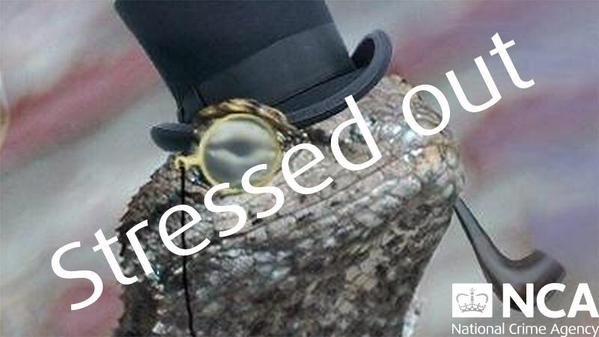 Wiadomość od hakerów z Lizard Squad /materiały prasowe