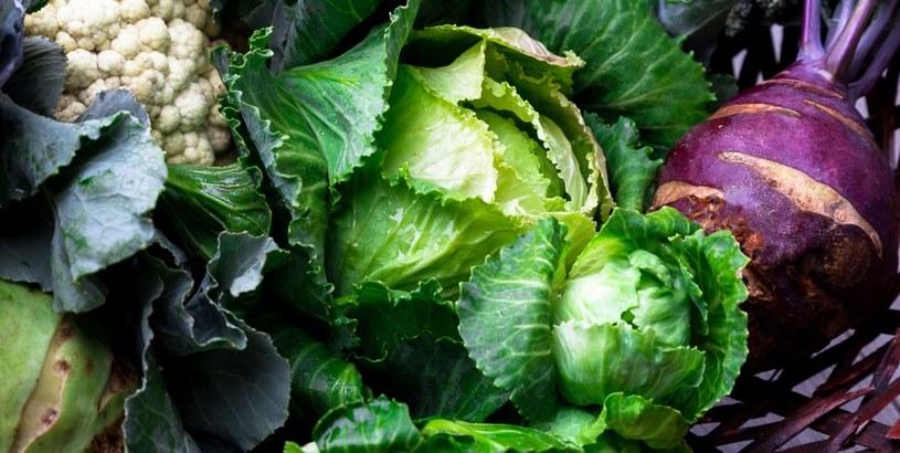 Wiatminy C szukaj w warzywach /©123RF/PICSEL
