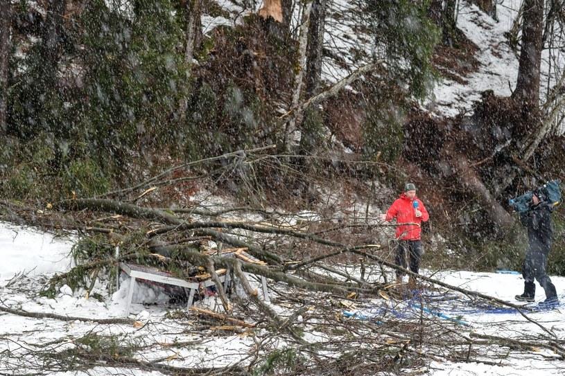 Wiatr powalił drzewa na trasy biegowe w Oberstdorfie /PAP/EPA