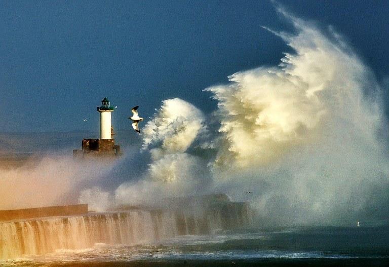 Wiatr wiejący z prędkością prawie 100 kilometrów na godzinę wyrządził też wiele zniszczeń /AFP