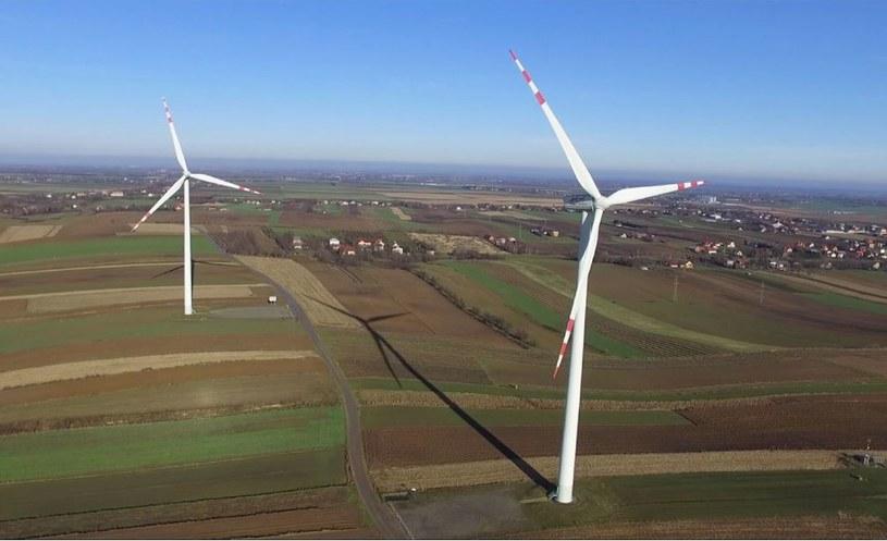 Wiatrowy zwrot energetycznego giganta /Łukasz Solski /East News