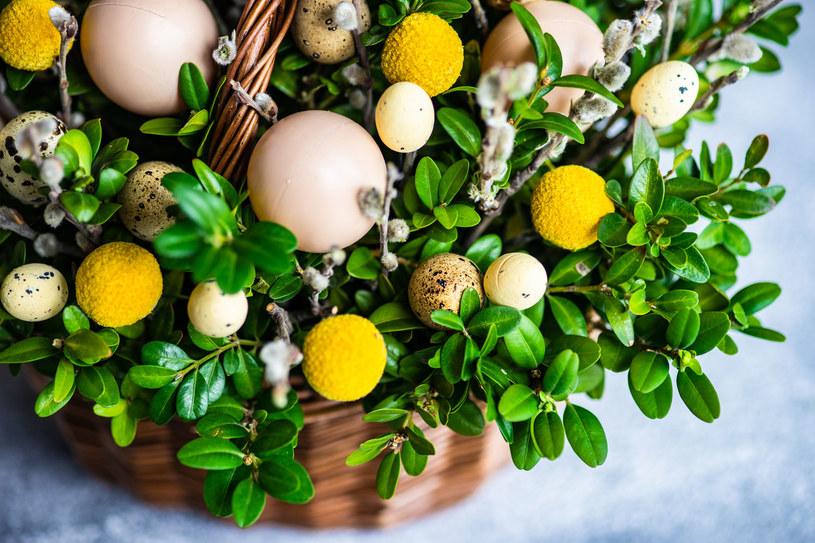 Wiązanki, wieńce, koszyczki - bukszpan możemy wykorzystać w każdej dekoracji /123RF/PICSEL