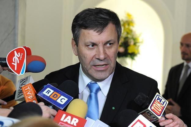 Wicepremier Piechociński szuka sposobów na wyjście z kryzysu /PAP