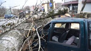 Wichura przeszła nad Krakowem