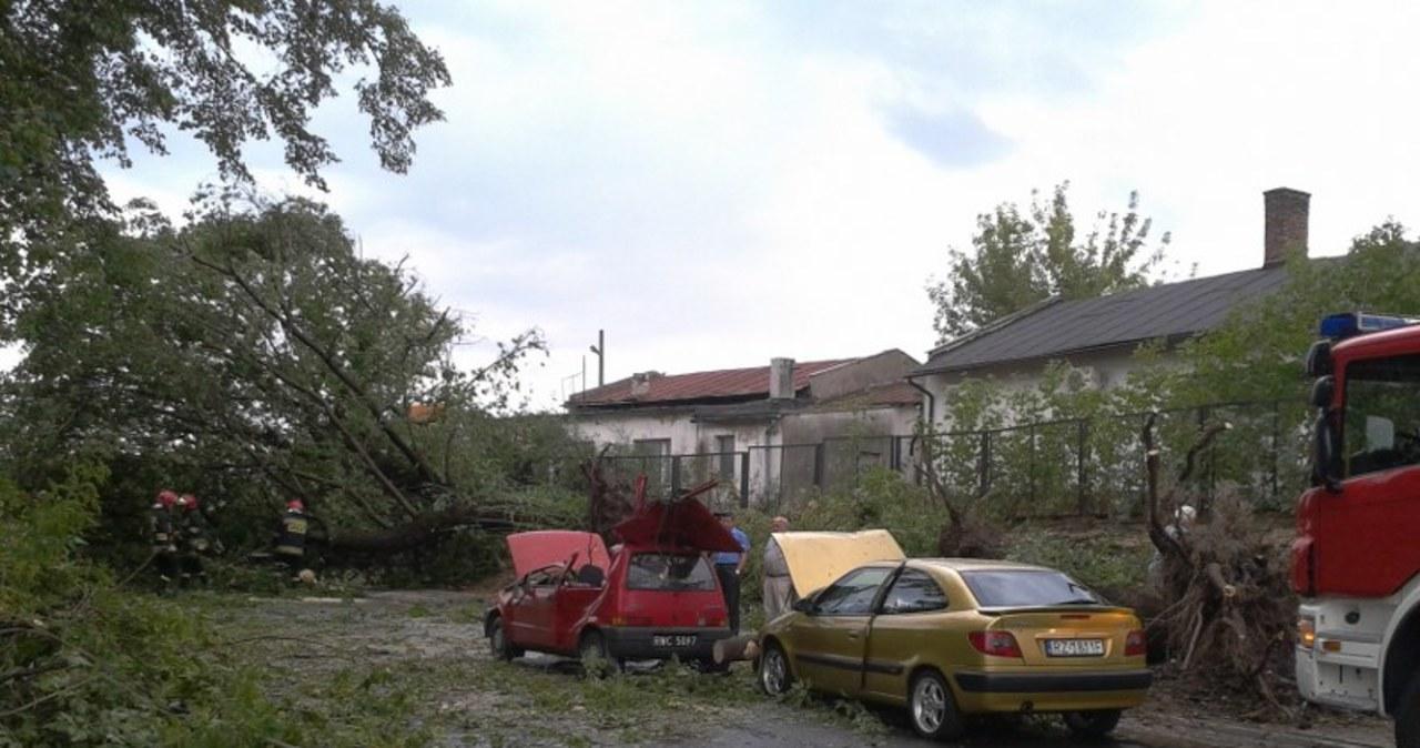 Wichura w Rzeszowie. Wiatr powyrywał drzewa