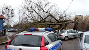 Wichury nad Polską. Silny wiatr łamie drzewa