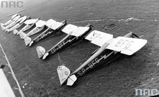 Widok grupy samolotów RWD-13 na płycie lotniska /Z archiwum Narodowego Archiwum Cyfrowego