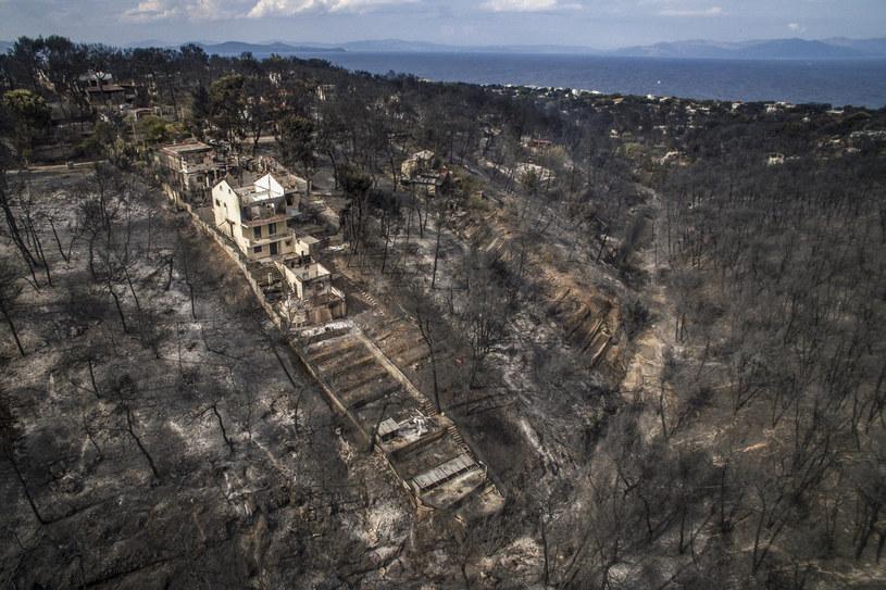Widok na zniszczone przez pożary Mati /SAVVAS KARMANIOLAS  /AFP