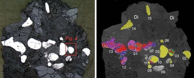 Widok ogólny próbki z basenu Hatrurim. Po lewej: polerowany przekrój pokazujący ziarna allabogdanitu i barringerytu (białe kamyczki). Po prawej: ten sam fragment ukazujący ziarna allabogdanitu (mieszane kolory) i barringerytu (żółty). /materiały prasowe