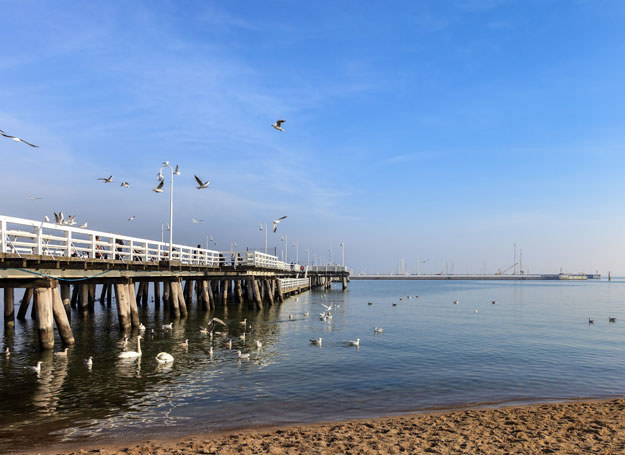 Widok z plaży na molo w Sopocie /123RF/PICSEL