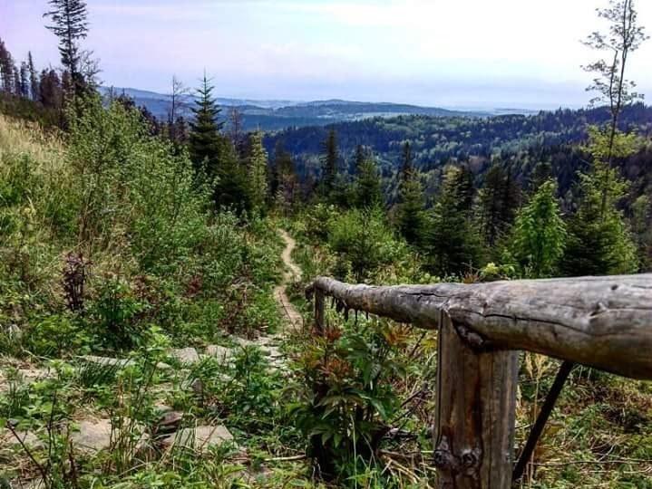 Widoki w okolicach Podhala należą do najpiękniejszych w Polsce /materiały prasowe