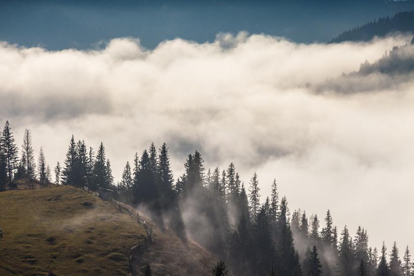 Widzialność będą utrudniać mgły /123RF/PICSEL