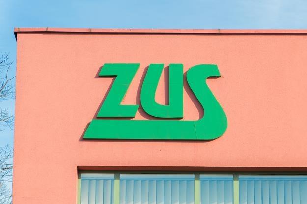 Więcej firm skorzysta z niższego ZUS /©123RF/PICSEL