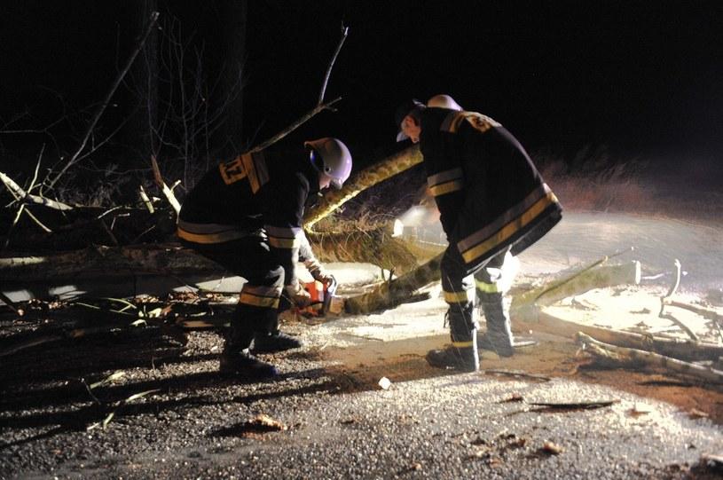 Większość akcji strażaków dotyczyła usuwania z ulic i dróg setek powalonych drzew i złamanych konarów, zdjęcie ilustracyjne /Kamil Kiedrowski /Reporter