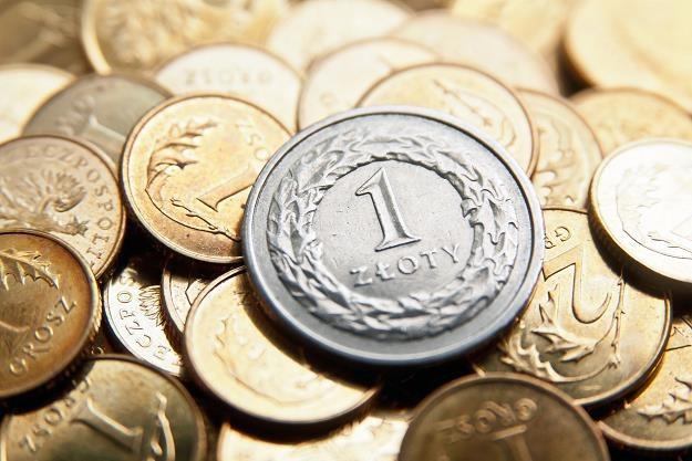 Większość lokalnych czynników sprzyja polskiej walucie i obligacjom /©123RF/PICSEL
