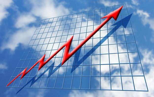 Większość obserwatorów rynku spodziewała się wzrostów! /© Panthermedia