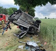 Większość wypadków z winy kierowcy? Profesor mówi o nieuniknionym