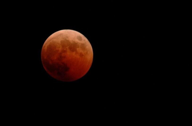 Większy współczynnik urodzeń gdy księżyc jest bliżej Ziemi /© Photogenica