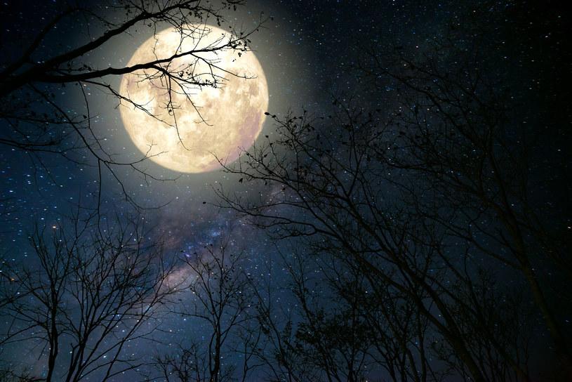 Wiele osób sądzi, że fazy Księżyca mają realny wpływ na nasze życie /123RF/PICSEL