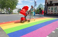 Wielka Brytania. Rośnie odsetek osób homo- i biseksualnych