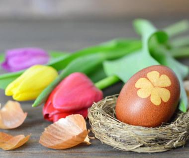 Wielkanoc 2021: Czym barwić jajka?