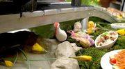 Wielkanoc na ludowo