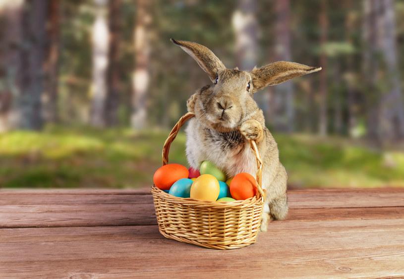 Wielkanoc to czas , gdy króluje radość i dominują jajka! /123RF/PICSEL