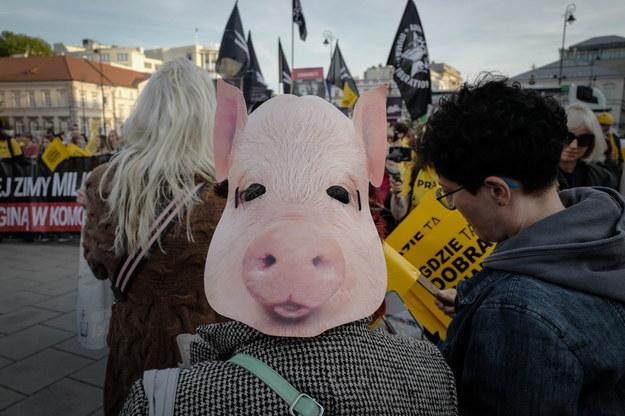 Wielki Marsz dla zwierząt na ulicach Warszawy /Mateusz Marek /PAP
