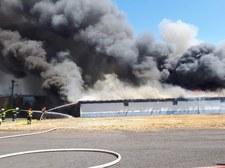 Wielkopolska: Strażacy walczą z trzema dużymi pożarami