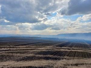 Wielkopolskie: Strażacy walczyli z ogromnym pożarem. Płonęło ponad 70 hektarów