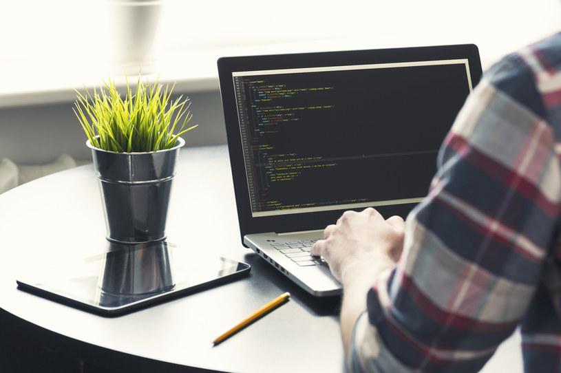 Wielu informatyków (programistów) rozlicza się tylko poprzez PIT, prowadząc jednoosobowe firmy /123RF/PICSEL