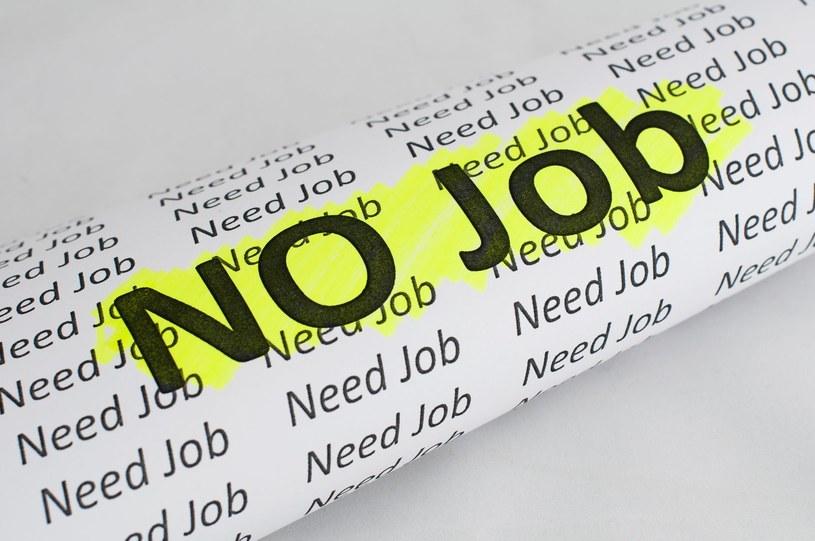 Wielu Polaków zniechęconych szukaniem pracy /123RF/PICSEL