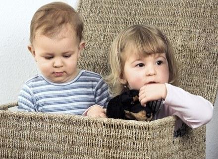 Wielu rodziców małych dam myśli teraz o odzwyczajaniu ich od pieluszki. /ThetaXstock