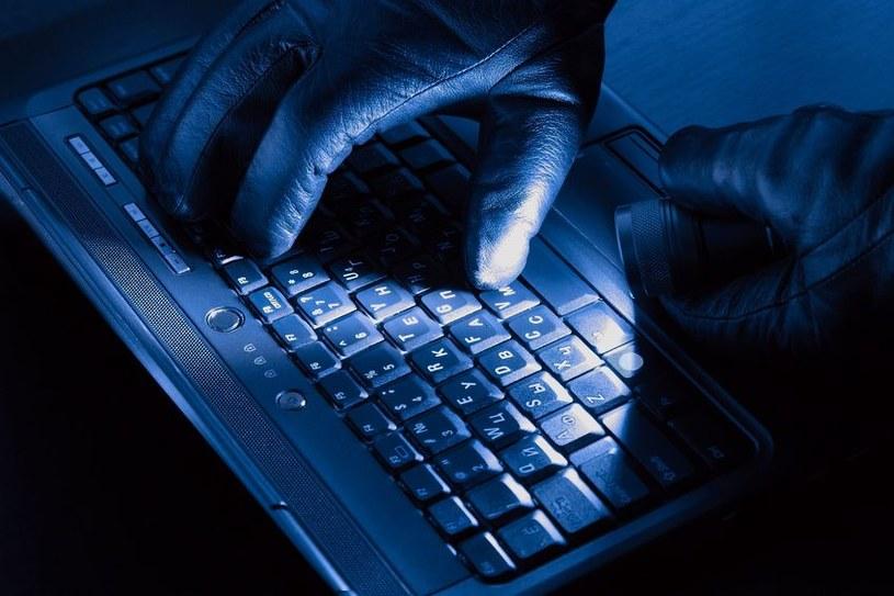 Wielu różnych cyberprzestępców nieustannie poluje na najbardziej poufne i tajne dane na całym świecie /123RF/PICSEL