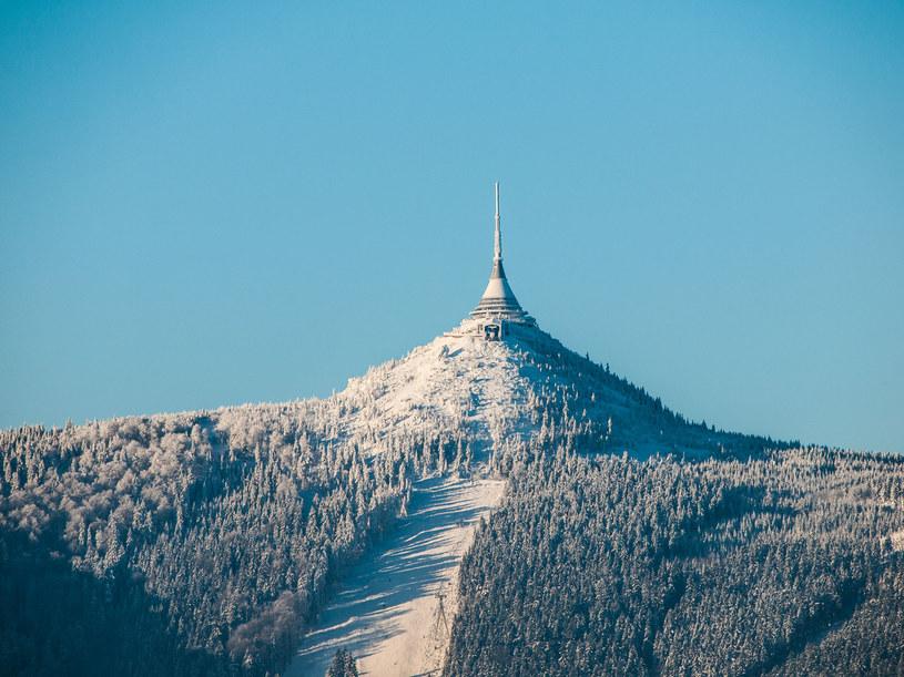 Wieża widokowa na szczycie Grzbietu Jeszczedzkiego /123RF/PICSEL