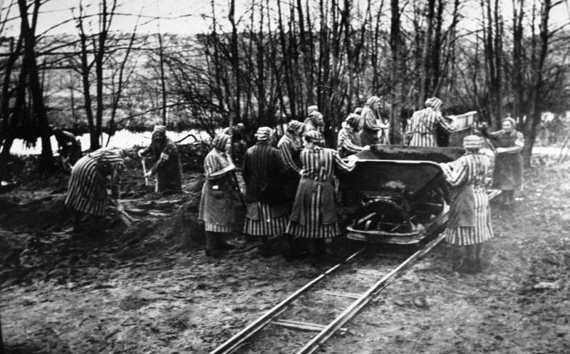 Więźniów obozów czekała 40-dniowa kwarantanna. Już w jej trakcie rozpoczynali morderczą pracę dla dobra Rzeszy /Bundesarchiv /domena publiczna