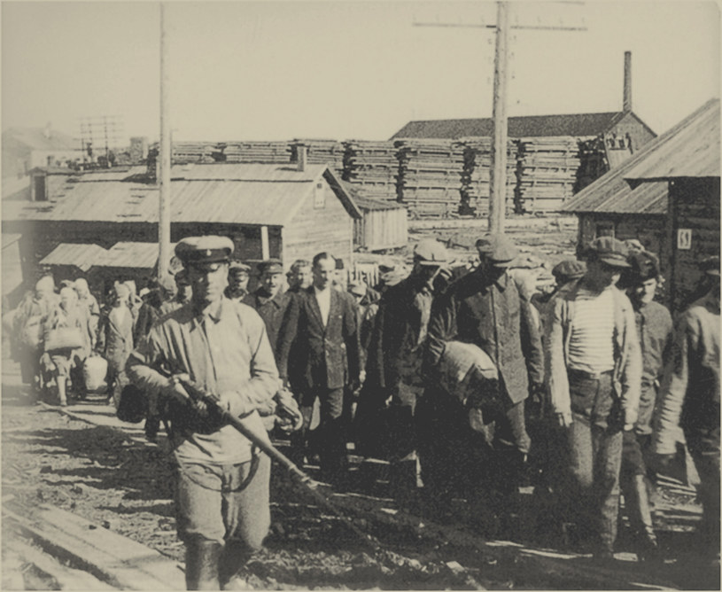 Więźniowie obozu w Sołowkach w drodze do pracy /Fine Art Images/Image State /East News