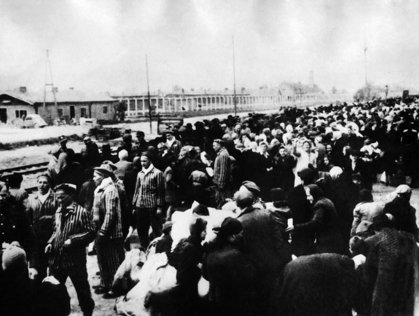 Więźniowie transortowani do komory gazowej w Auschwitz /AFP