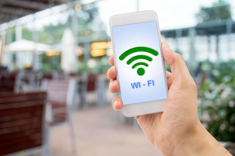 WiFi jest teraz niemal w każdym domu /123RF/PICSEL