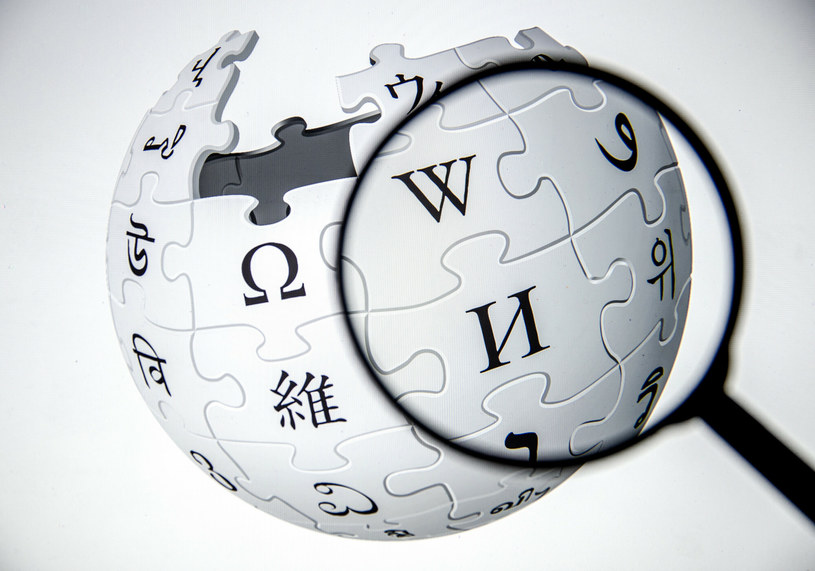Wikipedia, zdjęcie ilustracyjne /Ali Balikci/AFP/East News /East News